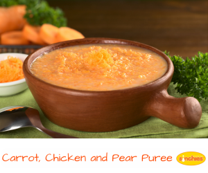 10 easy baby food recipes from rice cereal purees through to solids carrot chicken and pear puree 10 easy baby food recipes forumfinder Gallery
