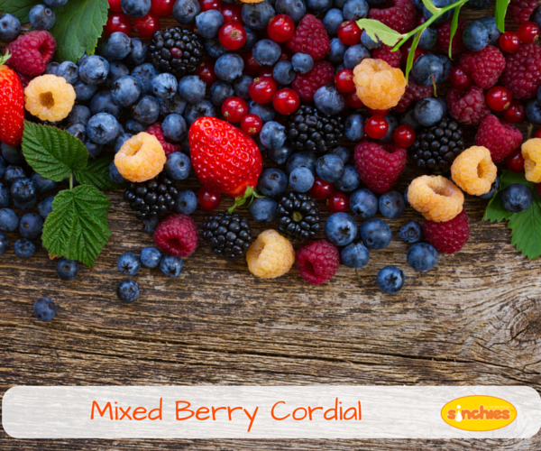 Mixed Berry Cordial homemade